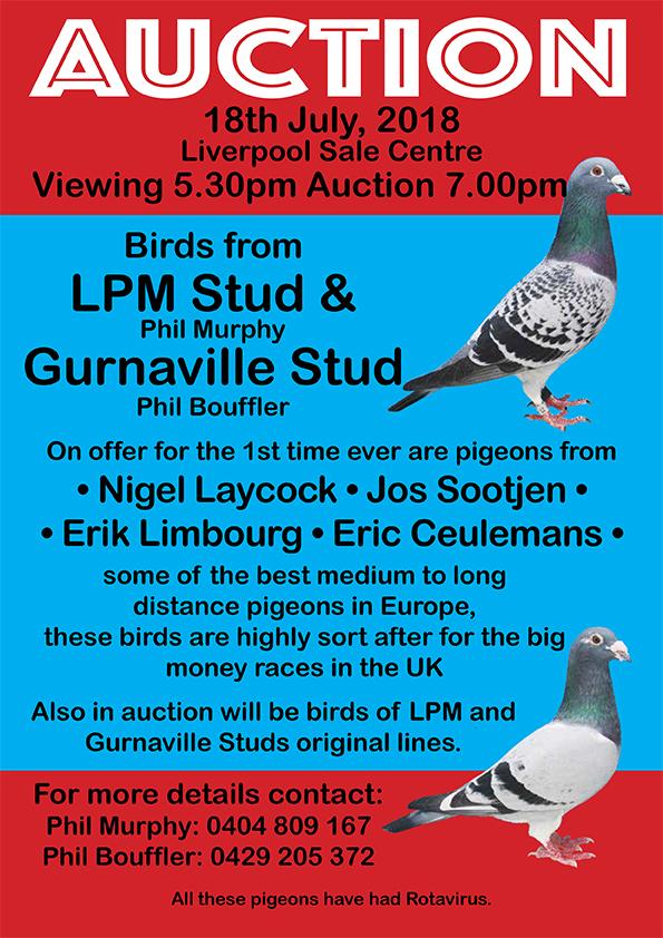 Sydney Auction 18 July 2018 – Gurnayville Lofts